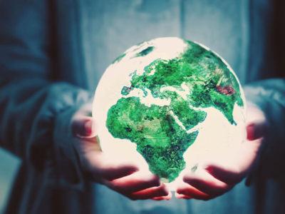 Petronas mais que floresta